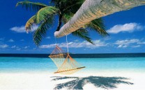9+-+Relax+-+Hammock+Hanging+from+Palm+Tree